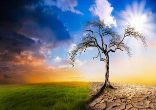 O clima em 2019: indicadores globais