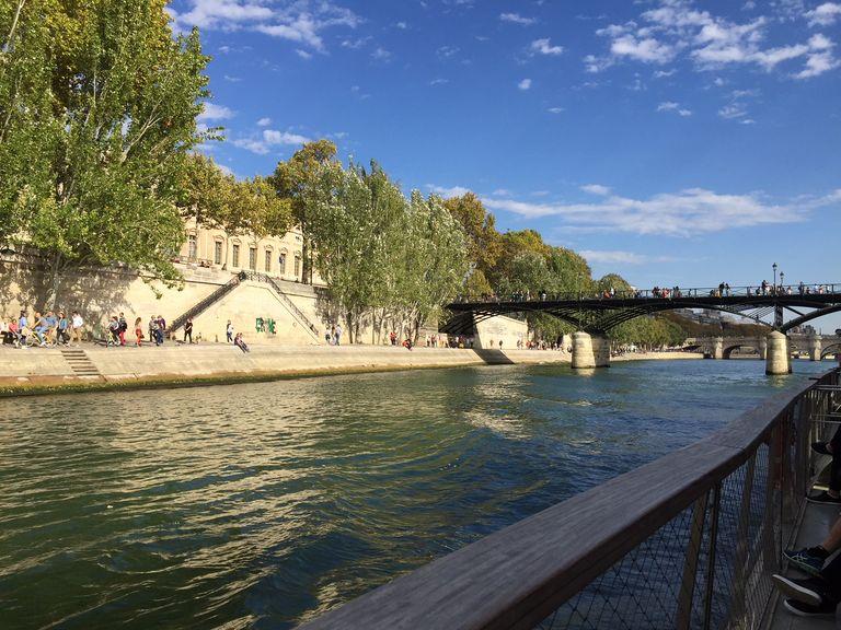 A Paris comme partout en France, l'année 2018 a été marquée par de nombreux records de chaleur.