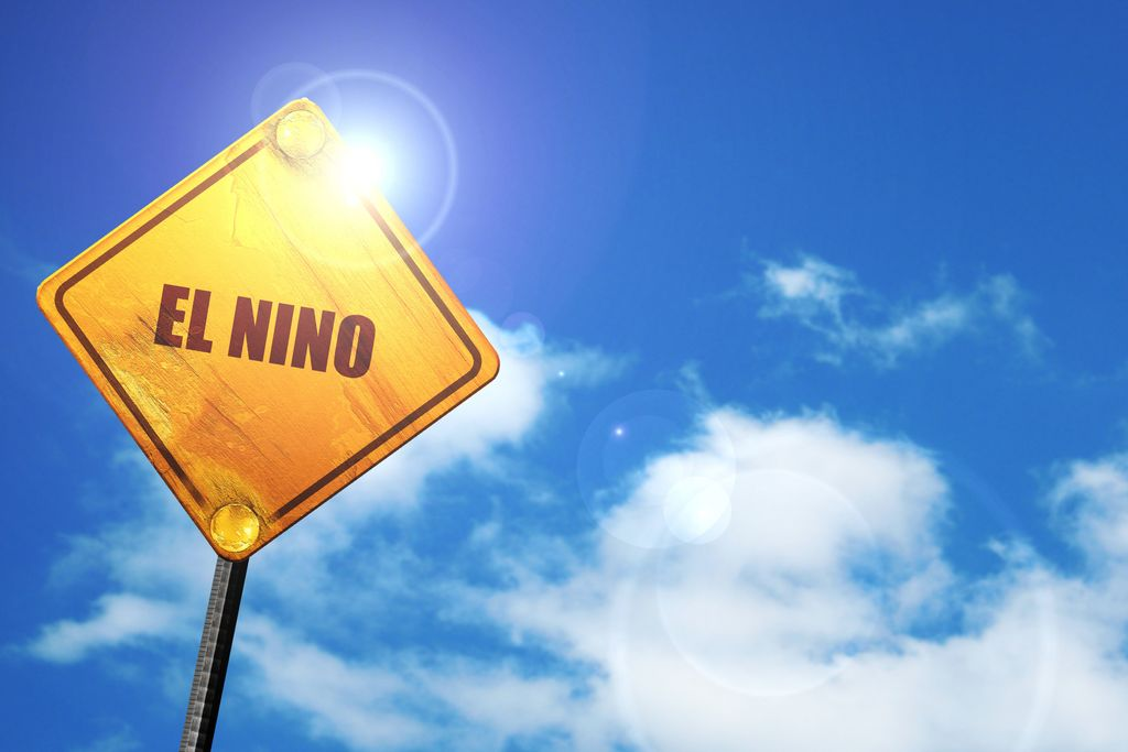 Warmer temperatures are forecast even without el Nino.
