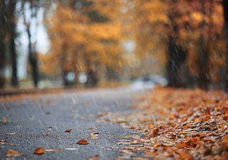 ¡Y que comiencen las lluvias! Tendencia climática para mayo 2021