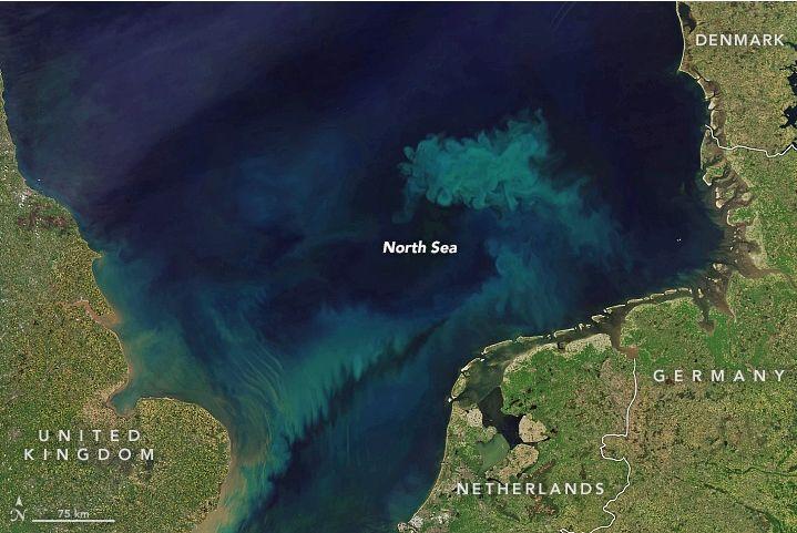 Color Primaveral En El Mar Del Norte