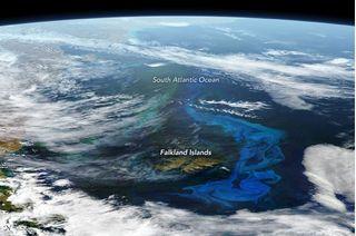Colores electrizantes en el Atlántico Sur