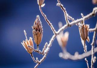 Comment rester en pleine santé avec ces écarts de températures ?