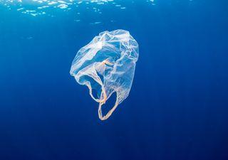 Comment le plastique peut-il devenir le tissu du futur ?