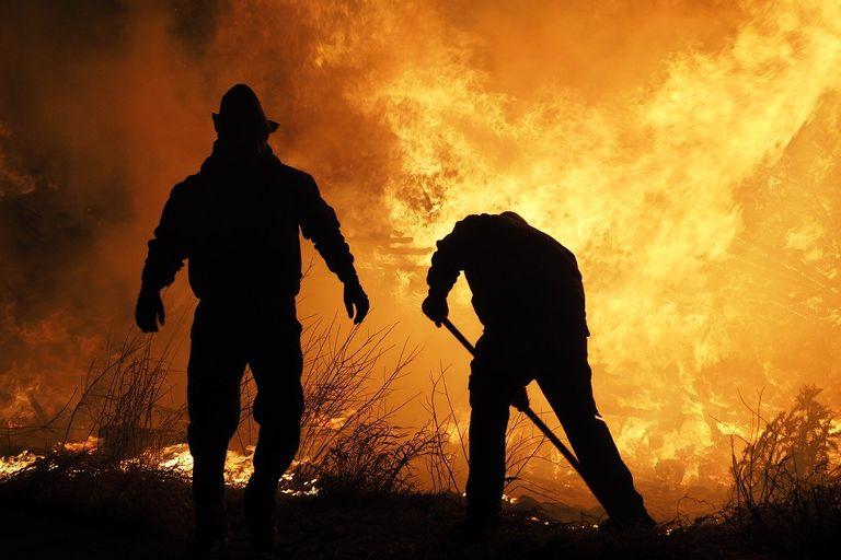Brigadistas combatiendo un incendio forestal