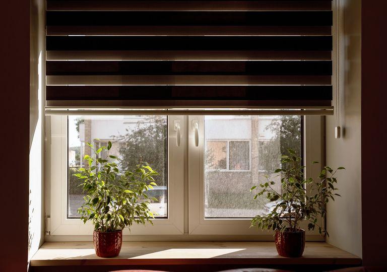 Ventana con persiana a medio cerrar adornada con plantas