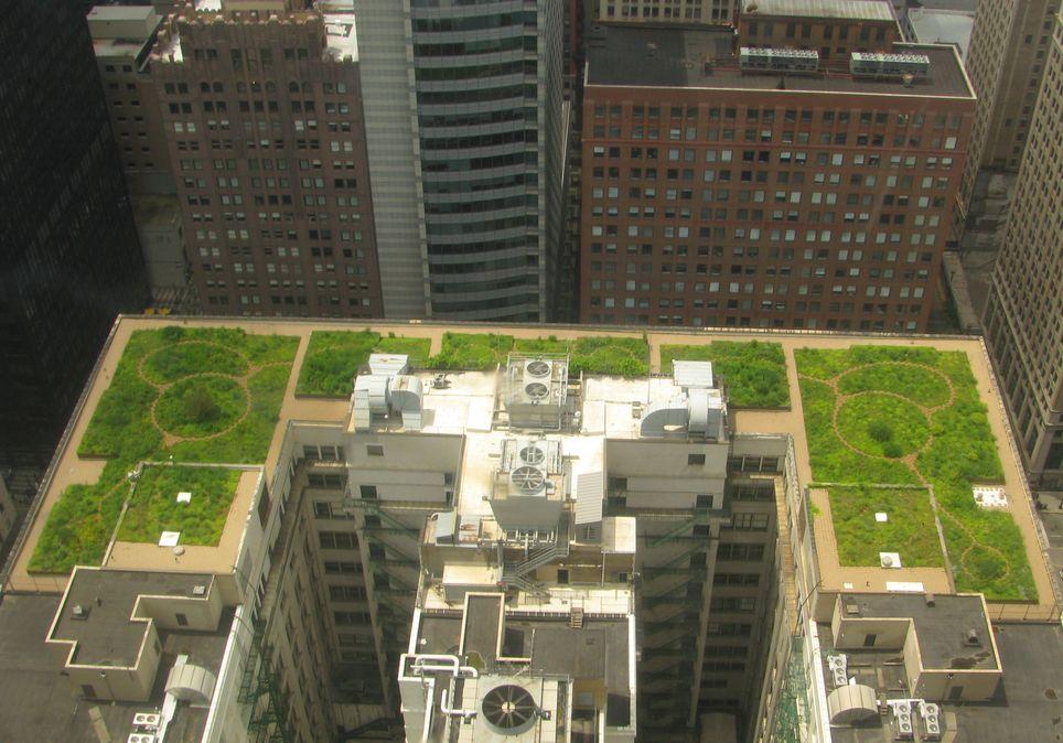 """Ejemplo de """"techos verdes"""" en la ciudad de Chicago (EEUU)."""