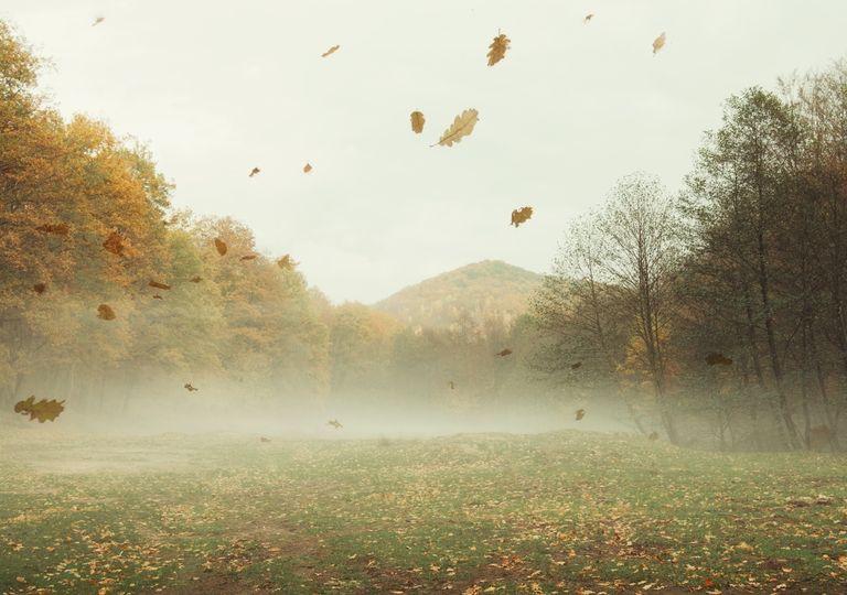 Alerta vientos Pampero agosto pronóstico