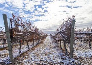Contrastes: frío en el sur, calor en el norte, nieve en el oeste