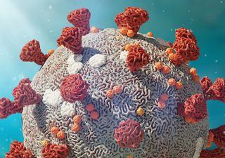 Coronavirus en el aire y sobre superficies: nuevo estudio
