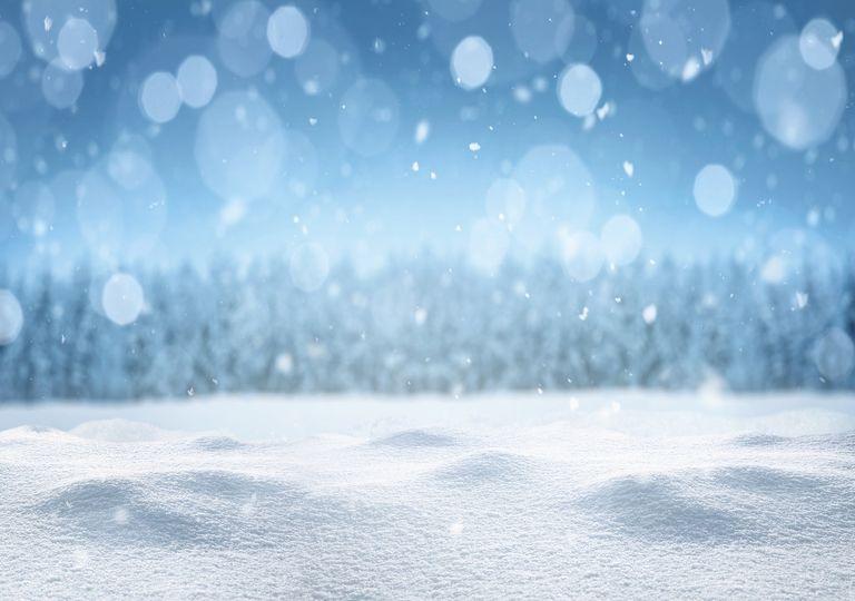 el silencio y la nieve