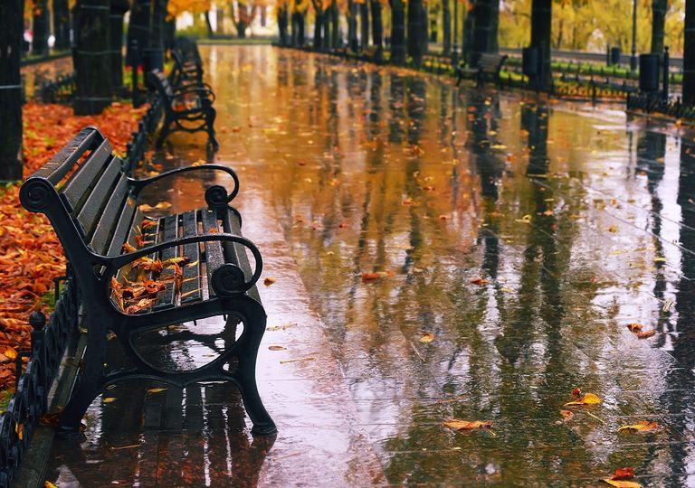 Banco en plaza día de lluvia otoñal