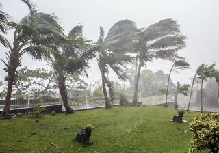 Cyclone Niran : des vents jusqu'à 200km/h en Nouvelle-Calédonie !