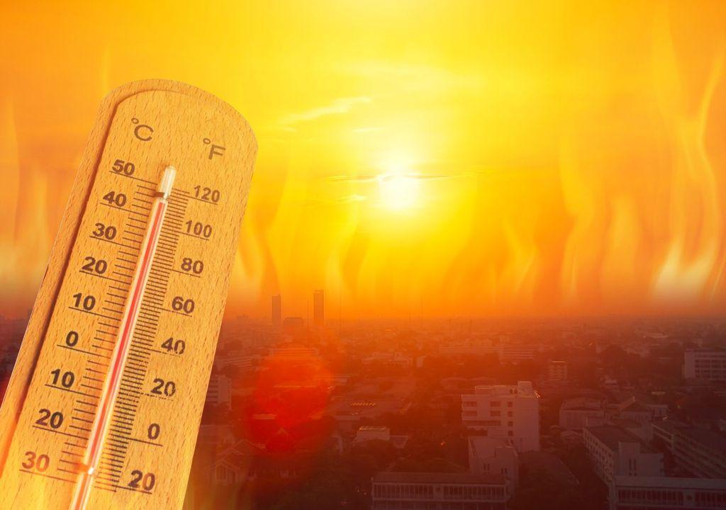 Warmer Juni