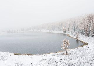 Der Schnee kommt: Wintereinbruch am Dienstag!