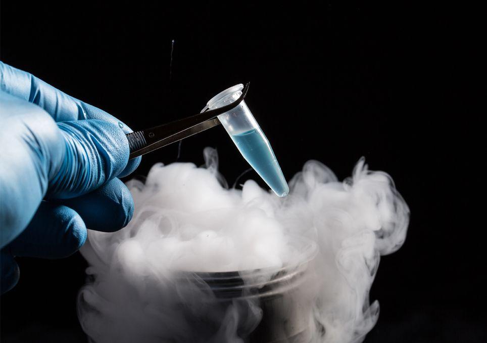 Vírus registos de gelo