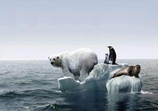 Descubren que el calentamiento global es peor de lo que se creía