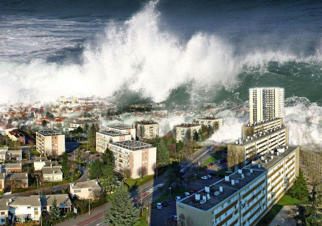tsunami; awareness day; risco; mitigação