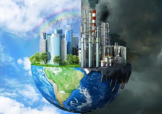 Día internacional contra el Cambio Climático: lo que hay que saber