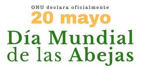 Día Mundial De Las Abejas, 20 De Mayo: Tan Pequeñas Y Tan Importantes