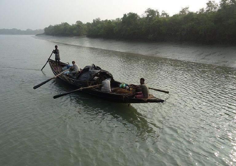 Personas navegando en un humedal