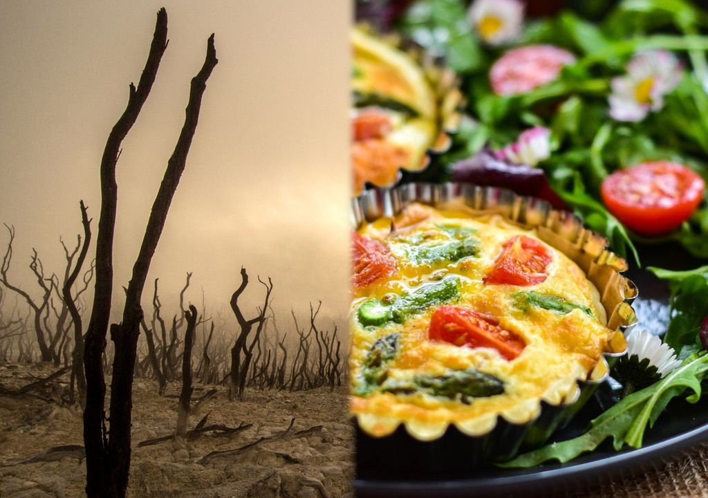 dieta vegana veganismo cambio climático