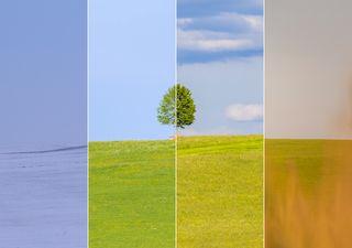 Definición de variabilidad del clima y cambio climático