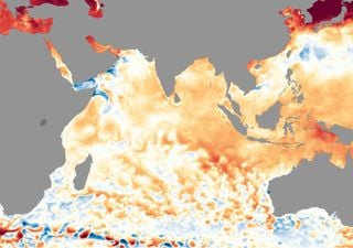 The Indian Ocean Dipole is back in action! What does this mean?