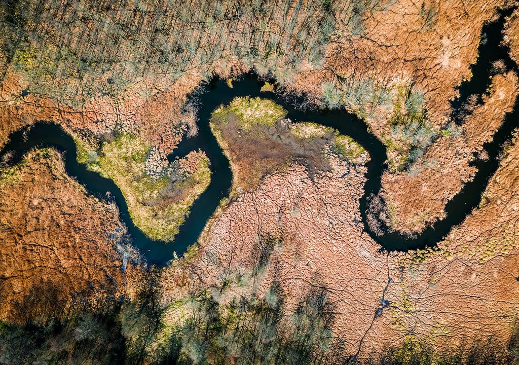 Deforestación y sequía