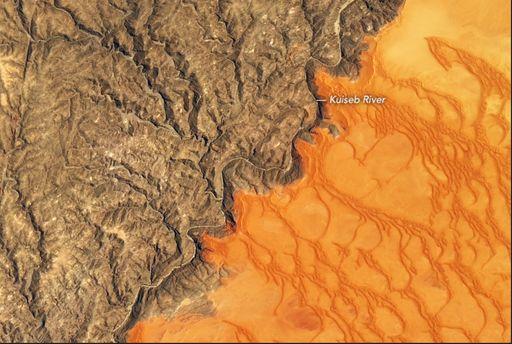 Donde terminan las dunas