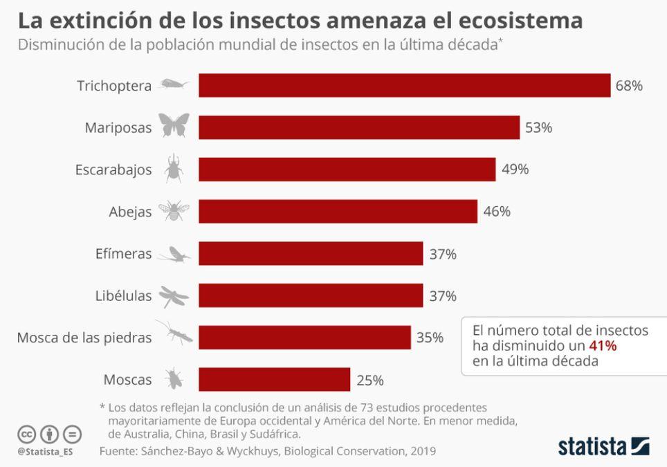 Insectos disminución cambio climático contaminación urbanización