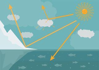 Efecto albedo: las superficies que absorben o rebotan la energía solar