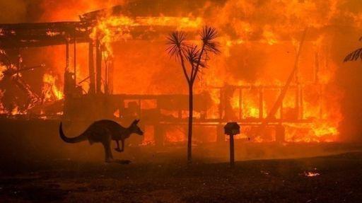 El 75% de los australianos afectados por los incendios forestales