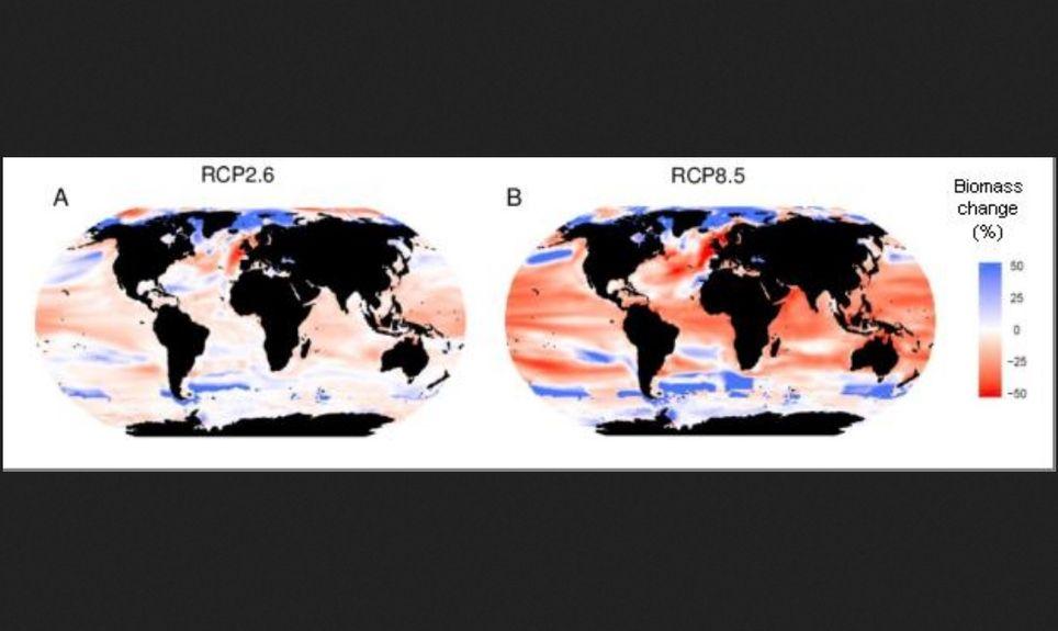 Cartografía de los cambios previstos en los océanos del mundo