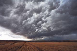 Calor intenso durante el fin de semana ¡pero atención a las tormentas!
