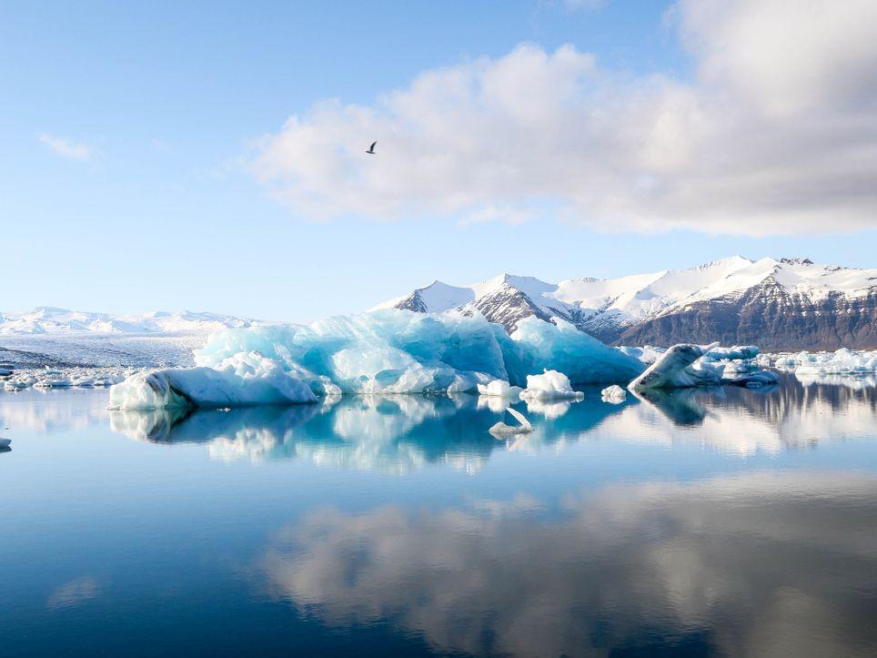 Datos proxy. Testigos de hielo, anillos de arboles, corales, sedimentos