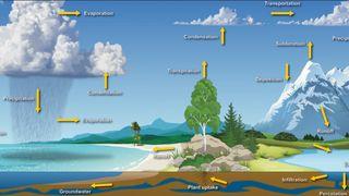 El ciclo hidrológico y el calentamiento global: su interrelación