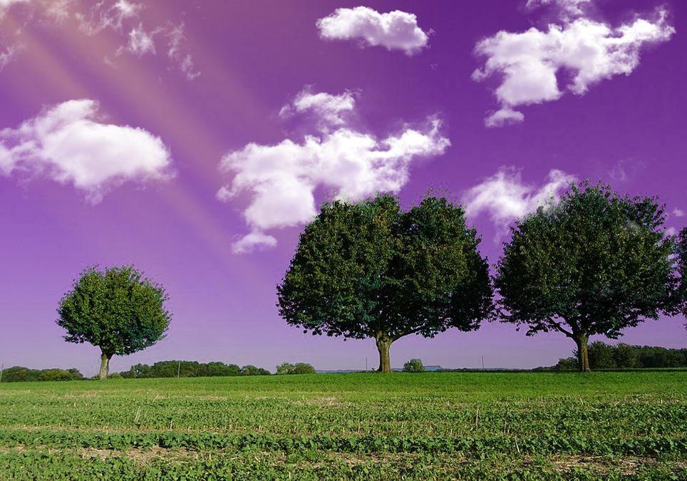 Cielo violeta o azul