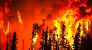 El clima se convierte en el principal problema electoral sueco después de incendios forestales