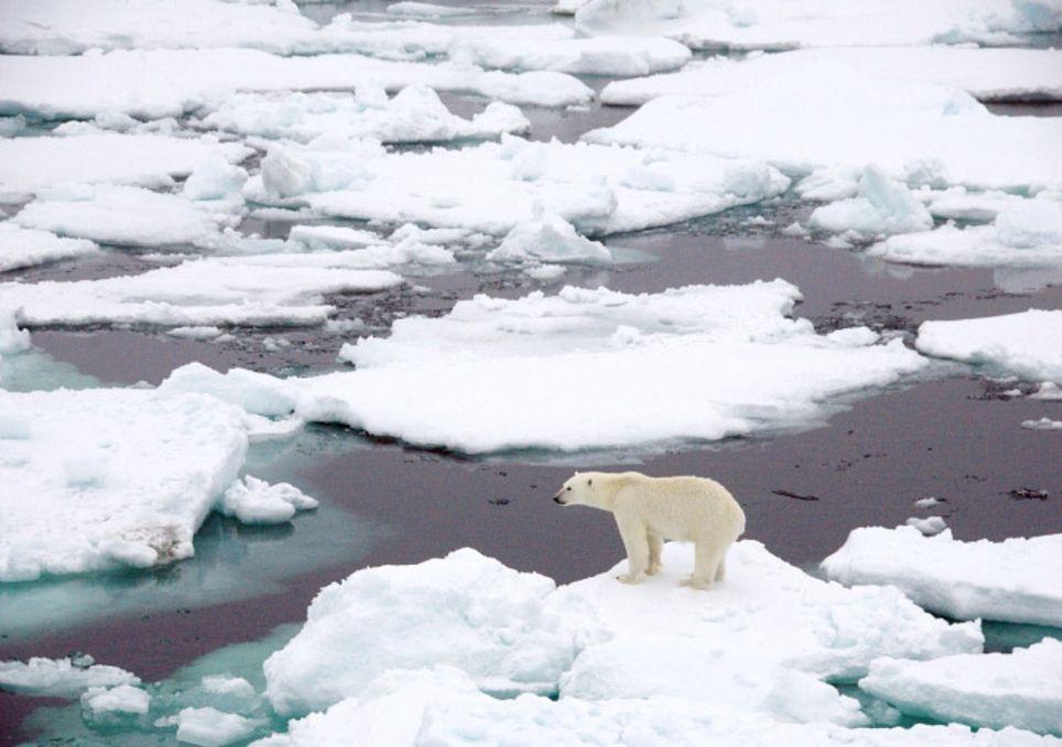 """Klimaschock: Eisschmelze den """"Point of no Return"""" erreicht!"""