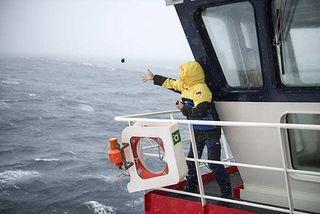 El engañoso enfriamiento de las aguas superficiales antárticas