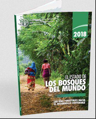 El Estado De Los Bosques En El Mundo