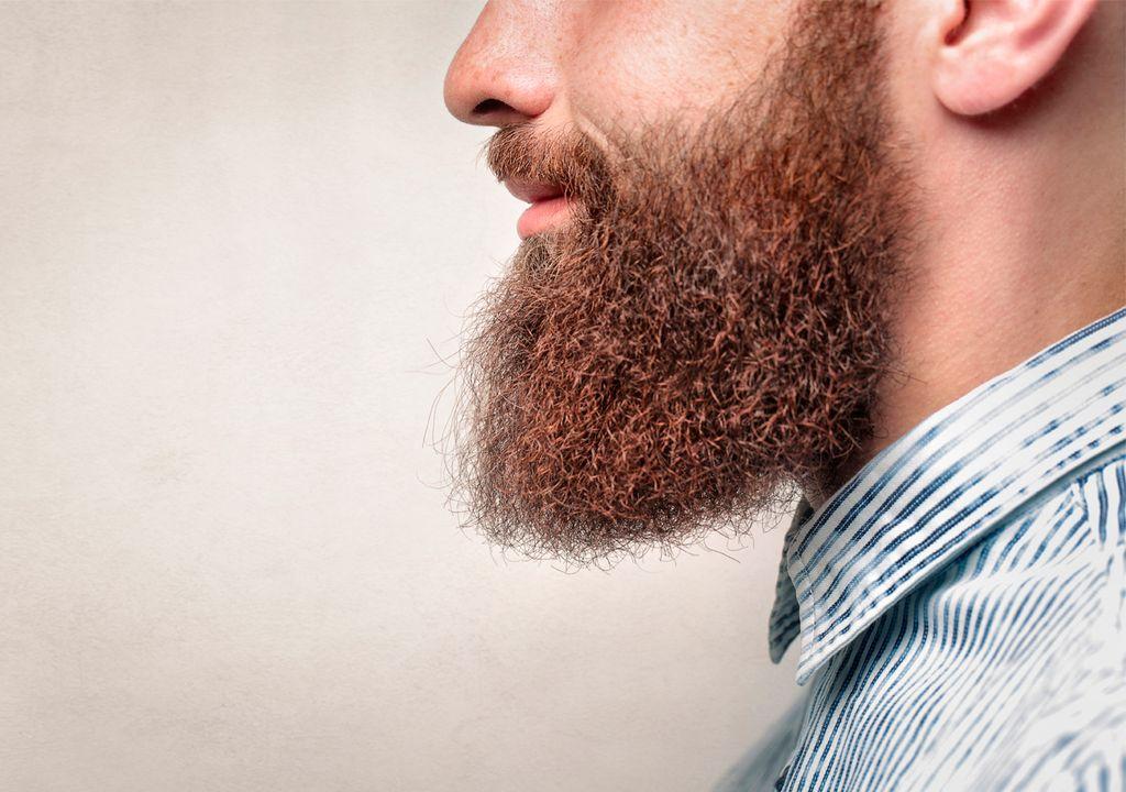 Barba; Vello facial