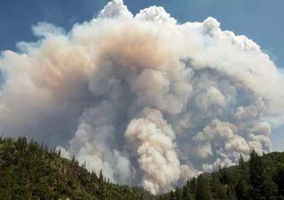El humo de algunos incendios forestales dan la vuelta al mundo