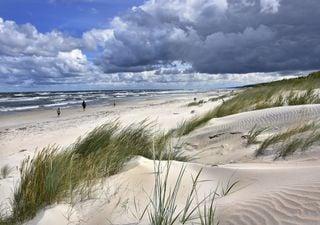 El importante papel de las dunas en los ecosistemas costeros