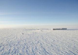 El polo sur se calentó tres veces más rápido que el resto del planeta