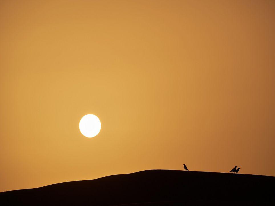 El Sáhara es la principal fuente de partículas en suspensión de nuestro planeta.