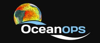 El sistema de observación oceánica 2020
