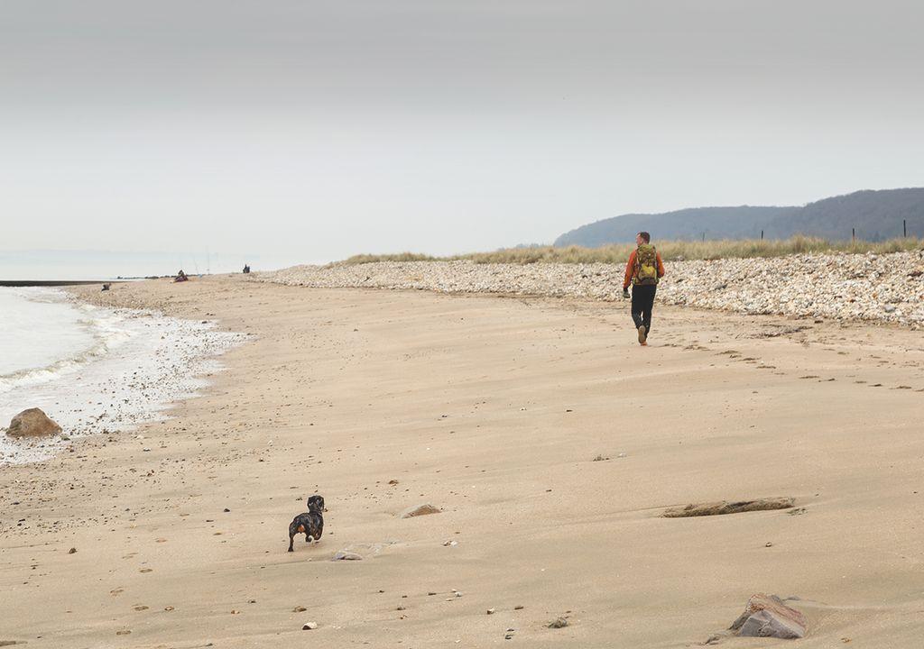 Playa otoño