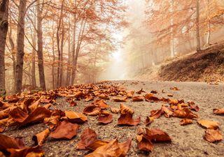 El tiempo en octubre: así se prevé el mes de las lluvias torrenciales